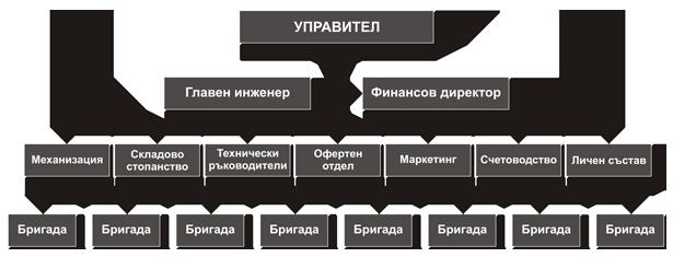 team_structure
